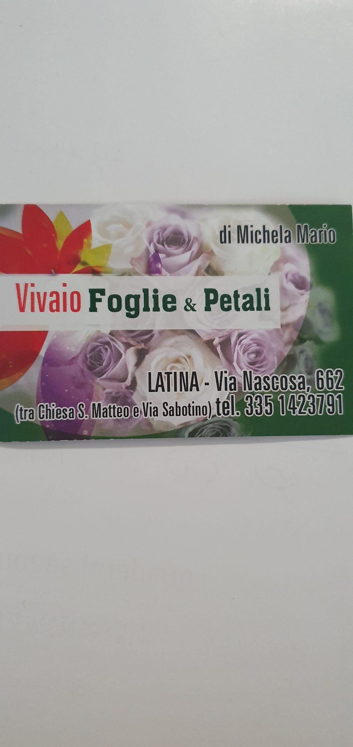 Vivaio Foglie e petali